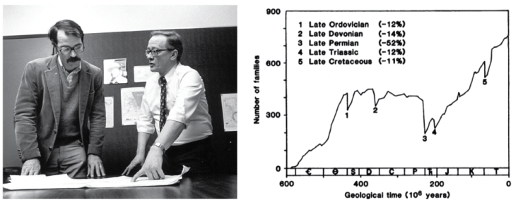 Figure 3 — Left: David Raup (right) and Jack Sepkoski discussing analyses in the early 1980s. Credit: University of Chicago. Right: Diversity curve showing the Big Five mass extinctions. From: Raup & Sepkoski (1982).
