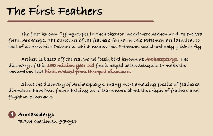 Figure 12 — Exhibit Panel 4: The First Feathers.