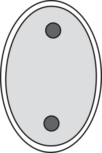 Figure 2 — A diagram of a diplopore respiratory structure. The two pores are connected by a non-mineralized tube, which is not generally preserved in the fossil record. These pores sit in a shallow depression (a peripore); multiple sets of peripores can exist on a single skeletal plate of a diplopore-bearing echinoderm (figure modified from Sheffield et al.; 2017).