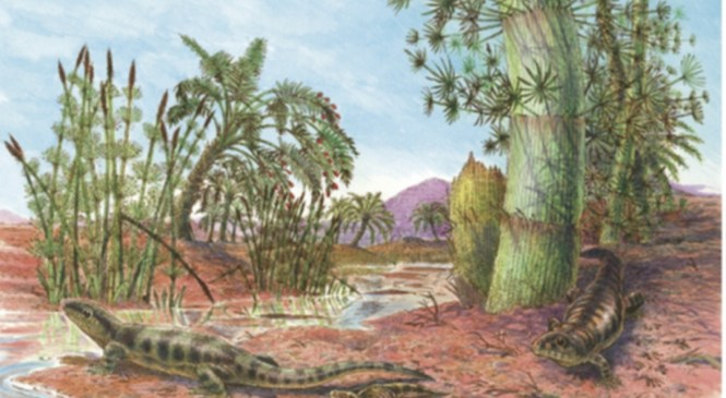 Fossil Focus: Stepping  through time with tetrapod trace fossils