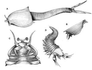 Figure 3 —