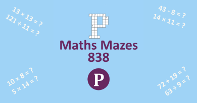 Maths Mazes 838