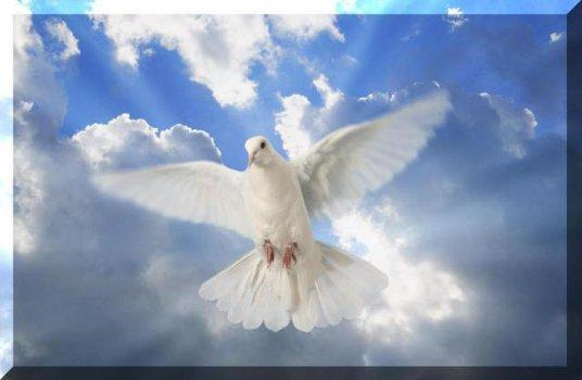 Terço pedindo o Sopro do Espírito Santo