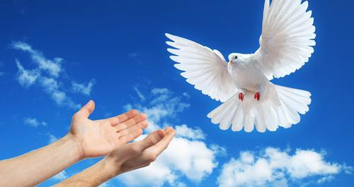 Terço para transmitir a paz