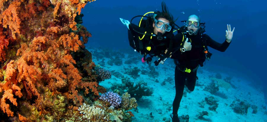 Scuba Refresher Course - Fun Dive