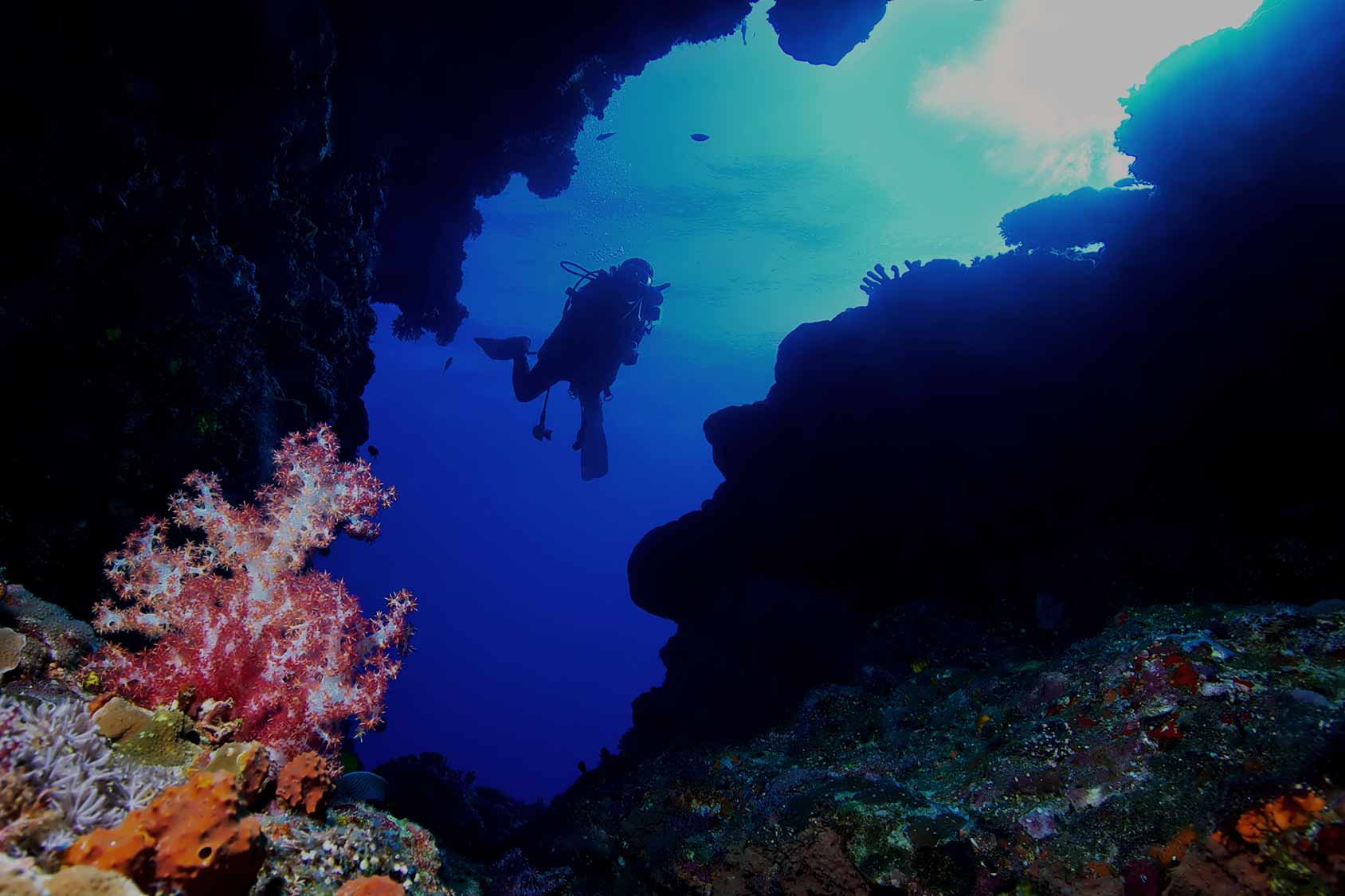 Padi deep diver specialty course palawan divers - Padi dive sites ...