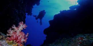 scuba-diving-el-nido