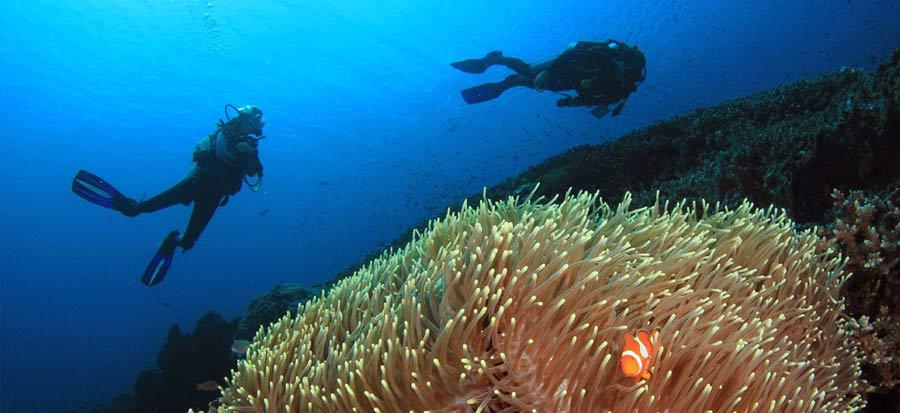 PADI Deep Diver Specialty Course - El Nido
