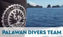 palawandivers-team-diving-elnido