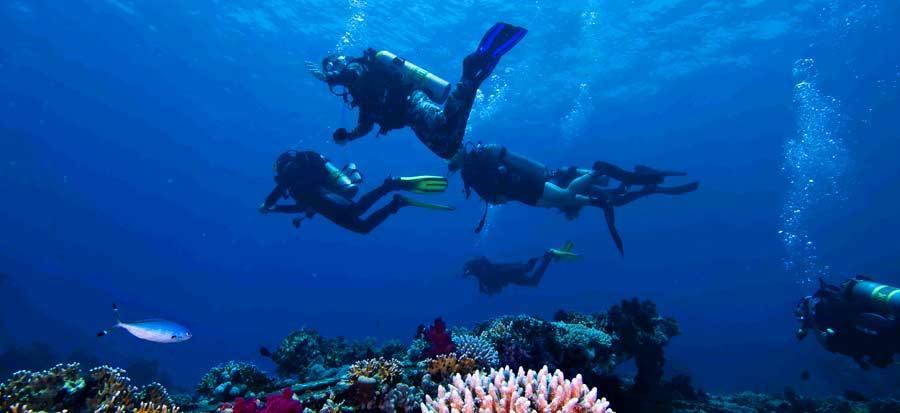 PADI Nitrox Specialty Course - Fun Dive
