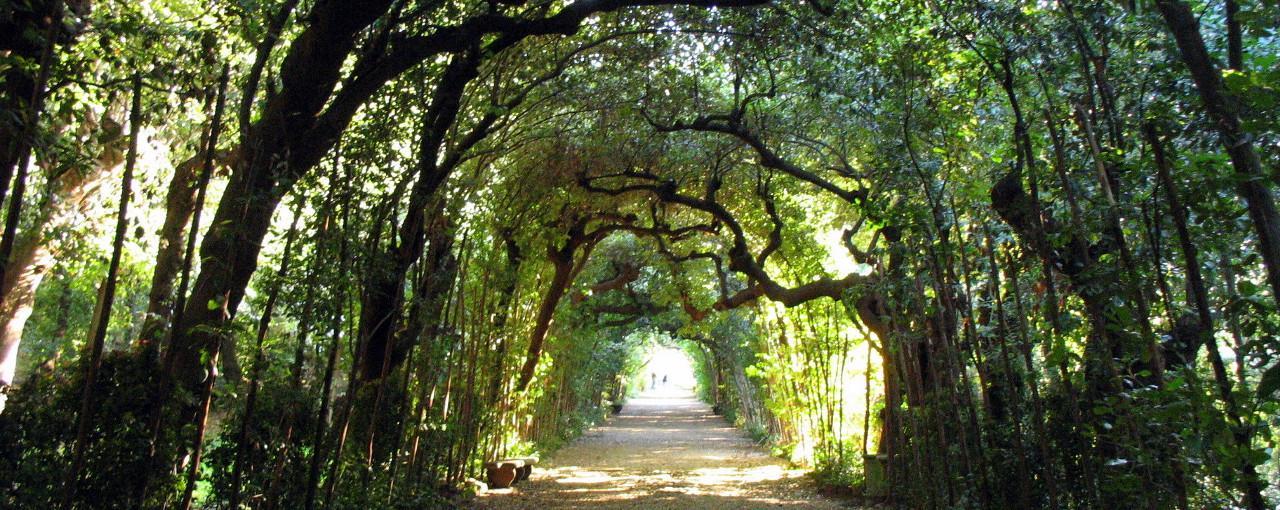 Giardino di Boboli a Firenze Centro Storico Giardini storici da visitare