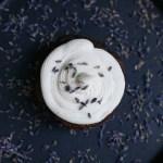 Celebration Cupcakes! | Chocolate Cupcakes with Lavender Vanilla Cream Cheese Frosting | Paleo-ish