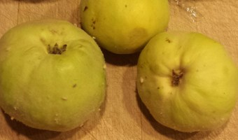 """Quince, Part Two  """"If at first you don't succeed, try, try again"""""""