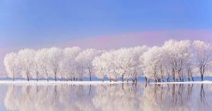 winter wonderland paleo newbie front page