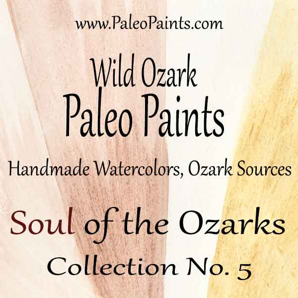 The cover for Collection No. 5 of the Wild Ozark Paleo Paint Collection No. 5