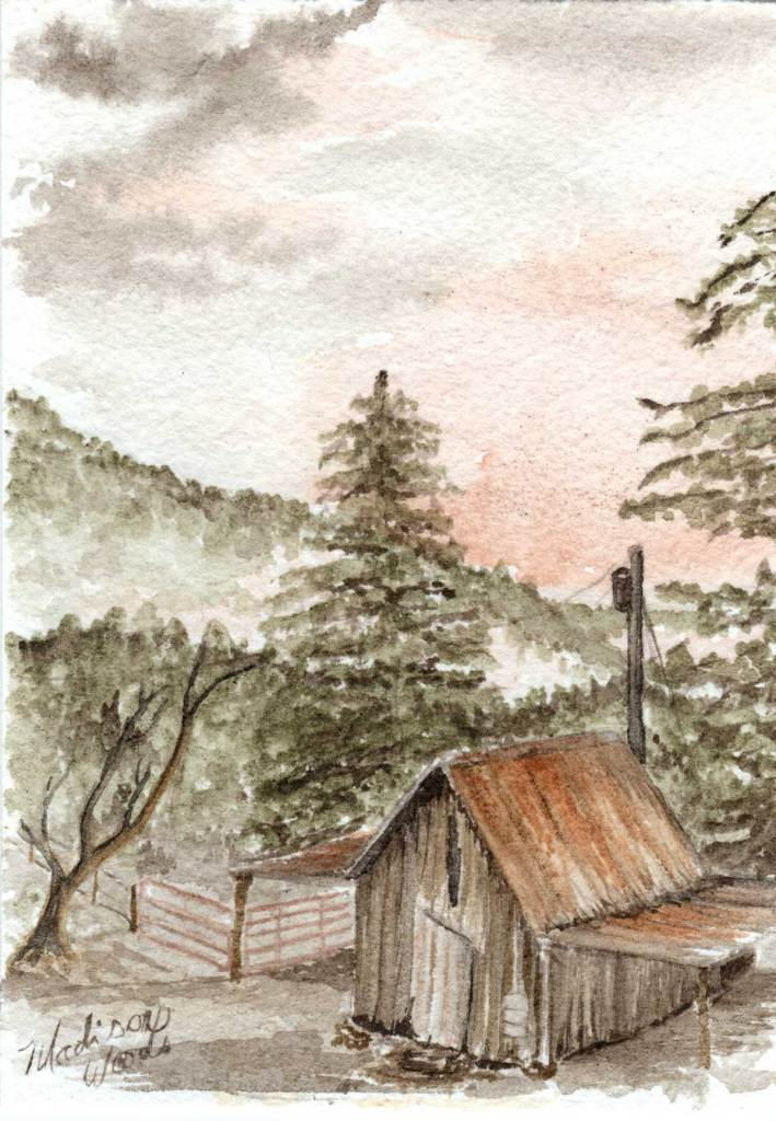 Old Shed (Pink Sunset)