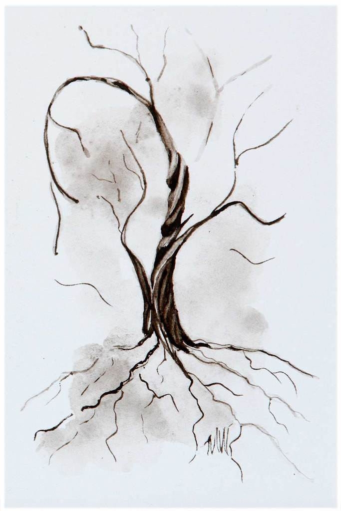 Twisted Tree Collection 2021-01/No. 3