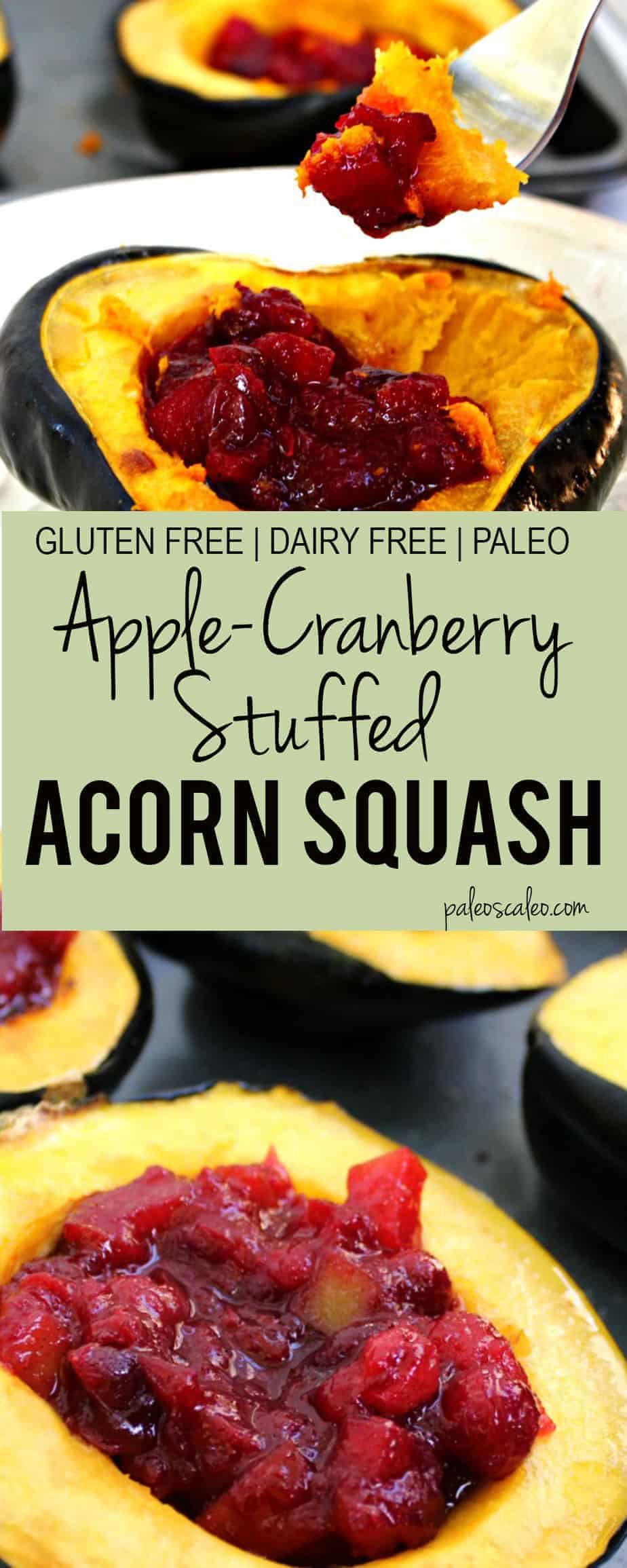 Apple Cranberry Stuffed Acorn Squash | PaleoScaleo.com