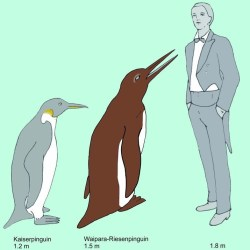 On the News | Giant Prehistoric Penguins Evolved During the Dinosaur Age @ Live Science