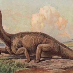 On the News | When Dinosaurs Went Bad @ Discover Magazine