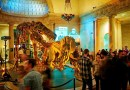 LA NHM seeks a Preparator of Vertebrate Paleontology