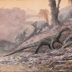 On the News   Archosaur fossils found in Tanzania are forcing scientists to rethink the evolution of dinosaurs @ The Los Angeles Times