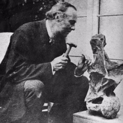 On the News | UK | Palaeontologist William Fox's dinosaur fossil finds displayed @ BBC News