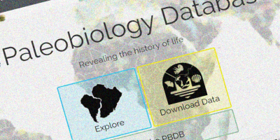Paleowire is partnering with The Paleobiology Database and you get the inside scoop