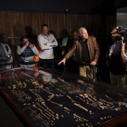On the News | South Africa | Biggest exhibit of human-like fossils goes on display in South Africa @ Reuters