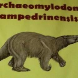 On the News | Argentina | Descubrieron un nuevo mamífero prehistórico en San Pedro @ La Capital