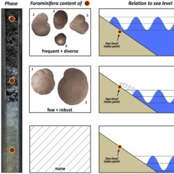Just out | Foraminifera as markers of Holocene sea-level fluctuations and water depths of ancient harbours — A case study from the Bay of Elaia (W Turkey) @ Palaeogeography, Palaeoclimatology, Palaeoecology