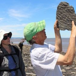 On the News | Canada | Harvard team fossil hunting at Blue Beach @ Herald News