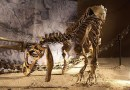 On the News | USA | Mystery of Cleveland Dinosaur Graveyard Finally Solved by Scientists @ Newsweek