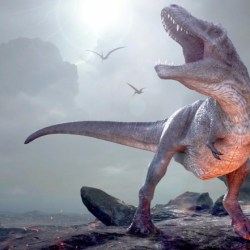 On the News   Mass extinctions on Earth are more common than youthink @ New York Post