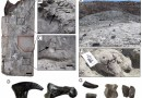Just out | New data towards the development of a comprehensive taphonomic framework for the Late Jurassic Cleveland-Lloyd Dinosaur Quarry, Central Utah @ PeerJ