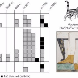 Just out | The palaeogenetics of cat dispersal in the ancient world @ Nature Ecology & Evolution