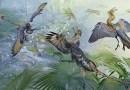 Free Online Course | University of Alberta | Theropod Dinosaurs & Origin of Birds