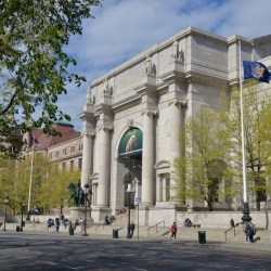 Invertebrate Paleontology Internship | American Museum of Natural History