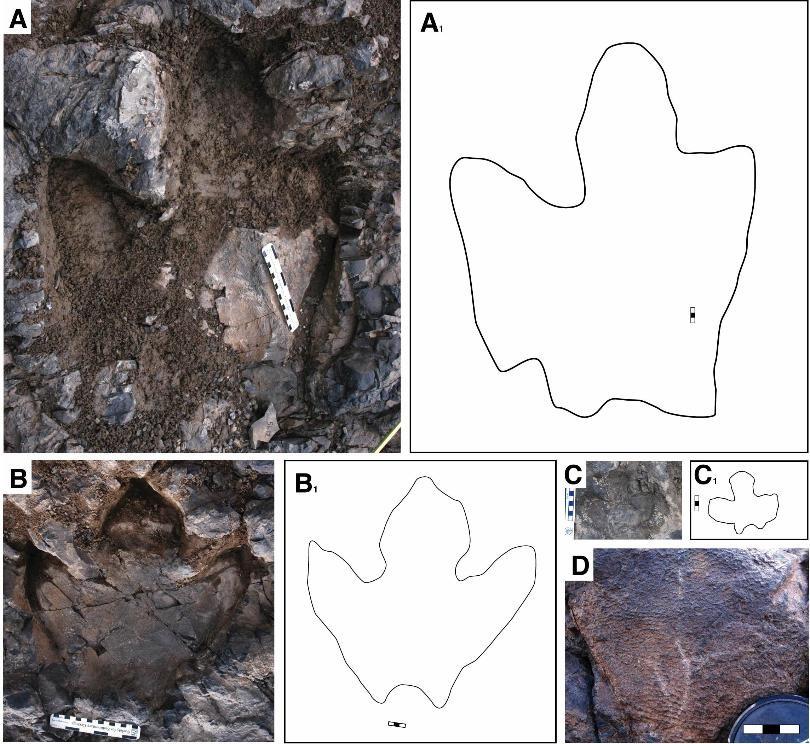 On the News | USA | Paleontologist uncovering the secrets of the dinosaurs of Aniakchak @ KTUU