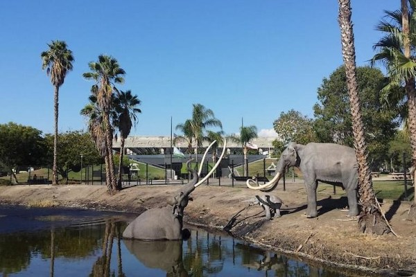 Job | Natural History Museum of Los Angeles | Curator, La Brea Tar Pits