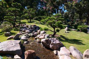 jardin-japones-133