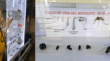 El Dr. Microscopio en plena campaña para la prevención del dengue