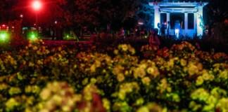Noche de los Jardines en El Rosedal de Palermo - Última edición del año