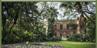 Actividades gratuitas en el Jardín Botánico durante el verano 2020