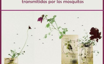 Cómo prevenirse de las enfermedades transmitidas por los mosquitos