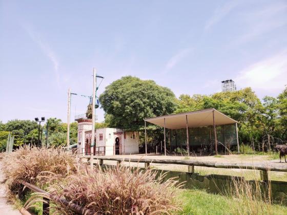 Ecoparque - Vista de la Jirafa desde el mirador