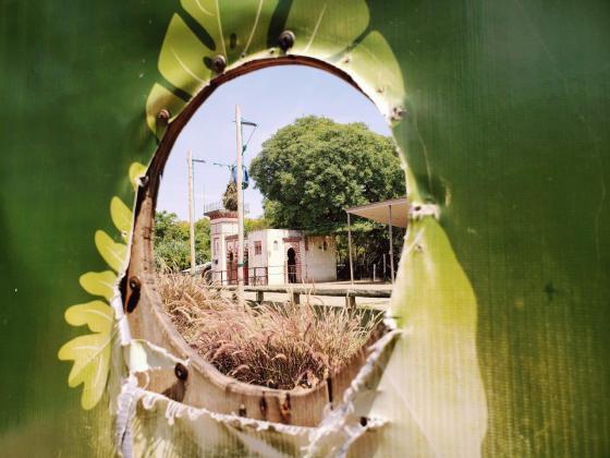 Ecoparque - Mirador de la Jirafa