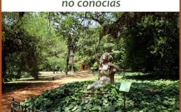 """Conociendo más a fondo el Jardín Botánico """"Carlos Thays"""""""