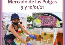 Feria Vegana en el Mercado de las Pulgas
