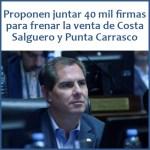 El legislador Roberto impulsa juntar 40 mil firmas para frenar la venta de Costa Salguero y Punta Carrasco